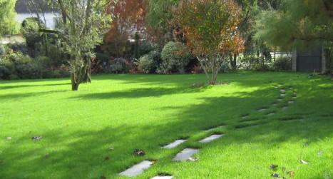 revetement allee de jardin - dalle