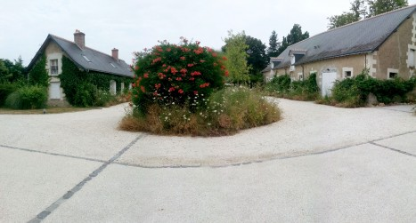revêtement aménagement jardin