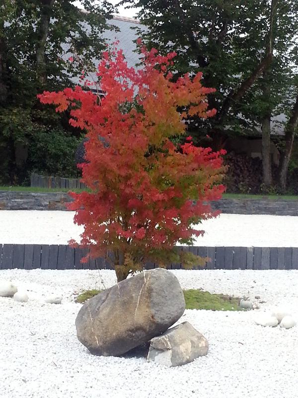 Int gration d un jardin min ral et uvres d art les for Jardin mineral