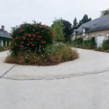 creation jardin zen tours